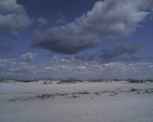 Johnson's beach(1)